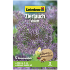 Blumenzwiebel »Gartenkrone Allium Christophii«