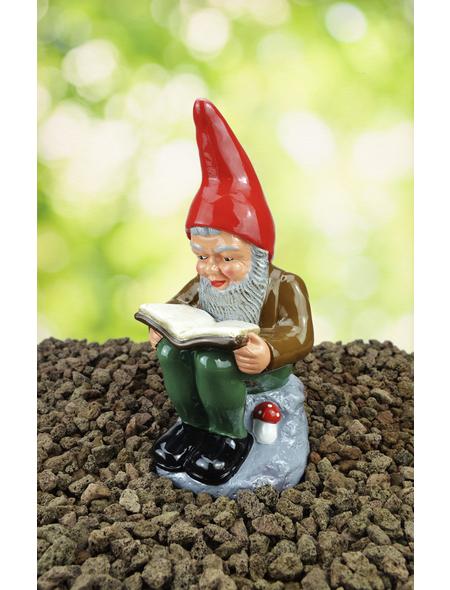 Gartenzwerg, der Bücherwurm Wilhelm, Höhe: 30  cm, Keramik, bunt | Garten > Dekoration > Gartenzwerge | HEISSNER