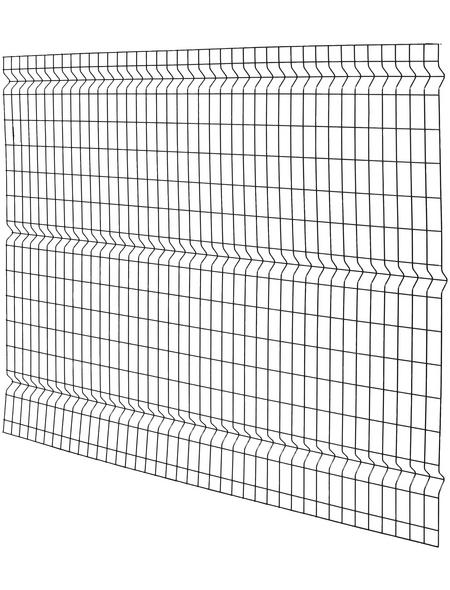 FLORAWORLD 3D-Felder-Zaunmatte, HxL: 150 x 200 cm, anthrazit