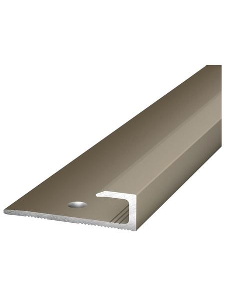 CARL PRINZ Abschlussprofil 1030 x 30 x 8 mm