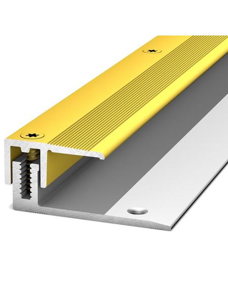 CARL PRINZ Abschlussprofil »LPS 220«, goldfarben, BxLxH: 50 x 1030 x 13 mm