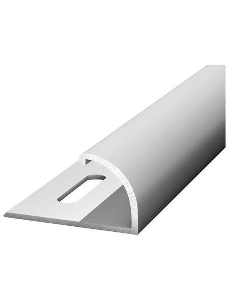 CARL PRINZ Abschlussprofil LxBxH: 1000 x 25 x 5,5 mm