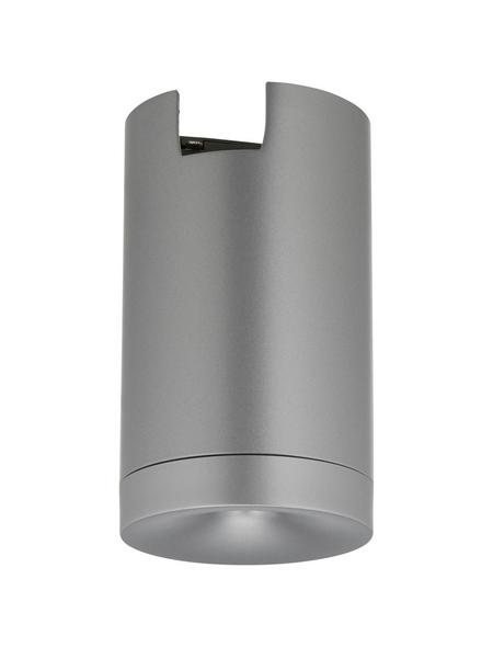 PAULMANN Adapter »URail«, Metall/Kunststoff, 230 V, chromfarben