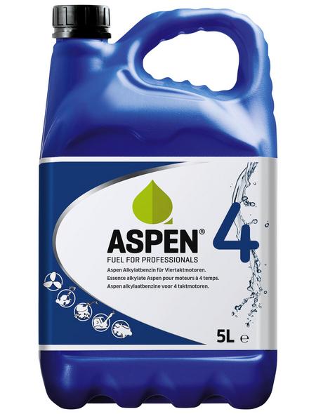 Aspen Alkylatbenzin, 5 l, für Rasenmäher, Boote, Schnee- & Motorfräsen, Schneemobile (alle 4-Takt Geräte)