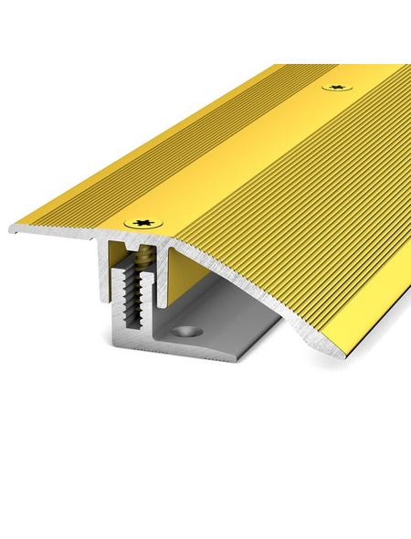 CARL PRINZ Anpassungsprofil »LPS 220«, goldfarben, BxLxH: 44 x 1030 x 14 mm