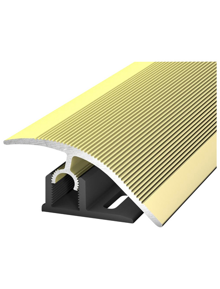 CARL PRINZ Anpassungsprofil »Profi-Tec Master«, BxLxH: 47x2700x15 mm