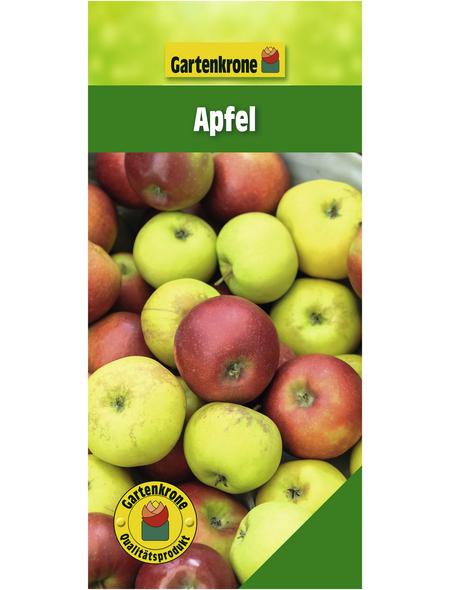 GARTENKRONE Apfel, Malus domestica, Früchte: süß-säuerlich, zum Verzehr geeignet