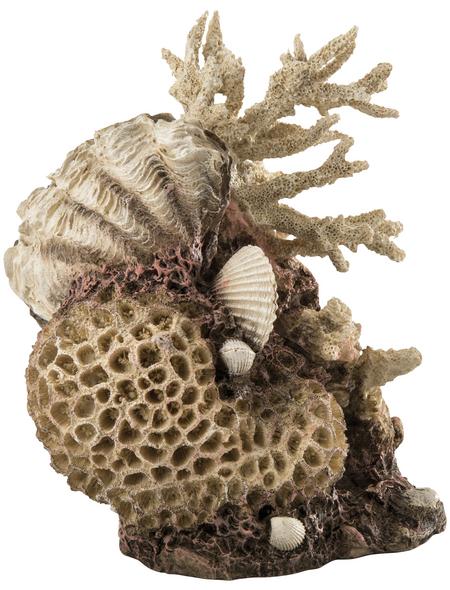 OASE Aquariendeko, biOrb Korallen-Muschel Ornament