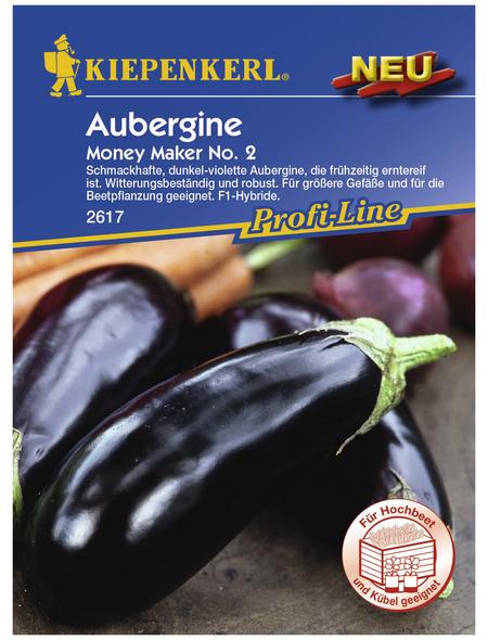 KIEPENKERL Aubergine melongena Solanum