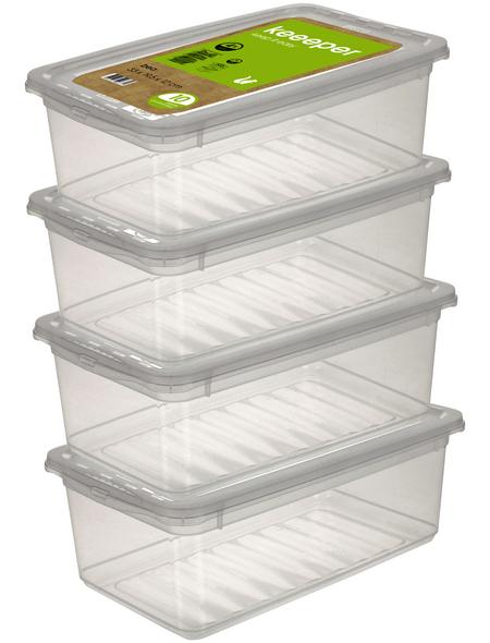 Aufbewahrungsbox »Bea«, BxHxL: 33 x 12 x 19,5 cm, Kunststoff