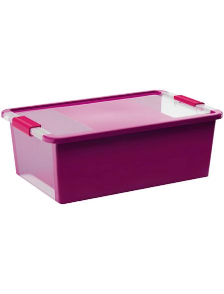 KIS Aufbewahrungsbox »Bi«, BxHxL: 55 x 19 x 35 cm, Kunststoff