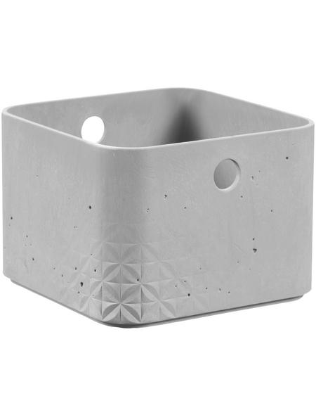 CURVER Aufbewahrungsbox, BxHxL: 17 x 12 x 17 cm, Kunststoff
