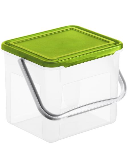Rotho Aufbewahrungsbox, BxHxL: 20 x 18 x 21 cm, Kunststoff