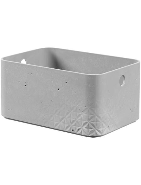 CURVER Aufbewahrungsbox, BxHxL: 24 x 12 x 17 cm, Kunststoff