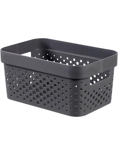 CURVER Aufbewahrungsbox, BxHxL: 26 x 12,3 x 17,5 cm, Kunststoff