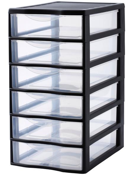 Rotho Aufbewahrungsbox, BxHxL: 26 x 50 x 36 cm, Kunststoff
