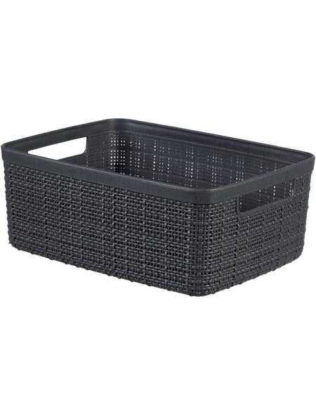 CURVER Aufbewahrungsbox, BxHxL: 27 x 11 x 20 cm, Kunststoff