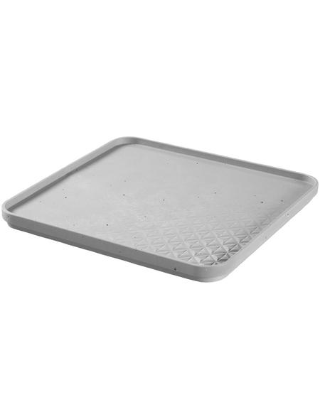 CURVER Aufbewahrungsbox, BxHxL: 28 x 2 x 28 cm, Kunststoff