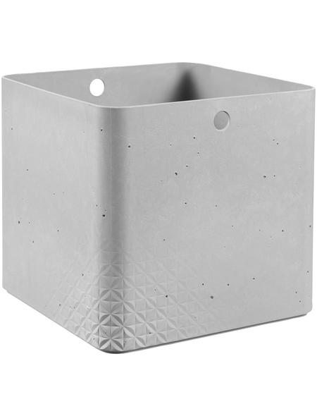 CURVER Aufbewahrungsbox, BxHxL: 28 x 26 x 28 cm, Kunststoff