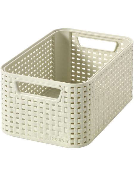 CURVER Aufbewahrungsbox, BxHxL: 28,5 x 13 x 19,4 cm, Kunststoff