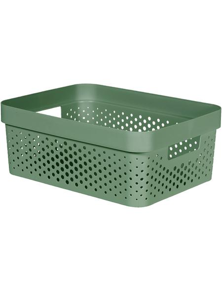 CURVER Aufbewahrungsbox, BxHxL: 35,6 x 13,6 x 26,6 cm, Kunststoff