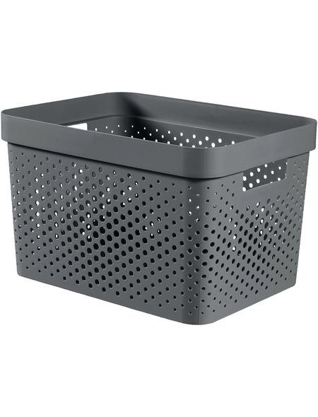 CURVER Aufbewahrungsbox, BxHxL: 35,6 x 21,8 x 26,6 cm, Kunststoff