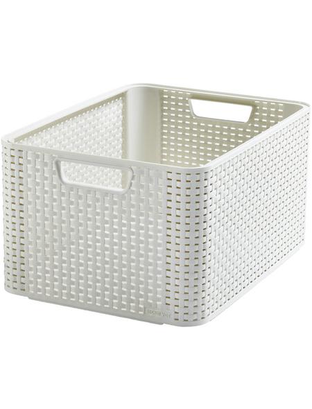 CURVER Aufbewahrungsbox, BxHxL: 43,6 x 23 x 32,6 cm, Kunststoff