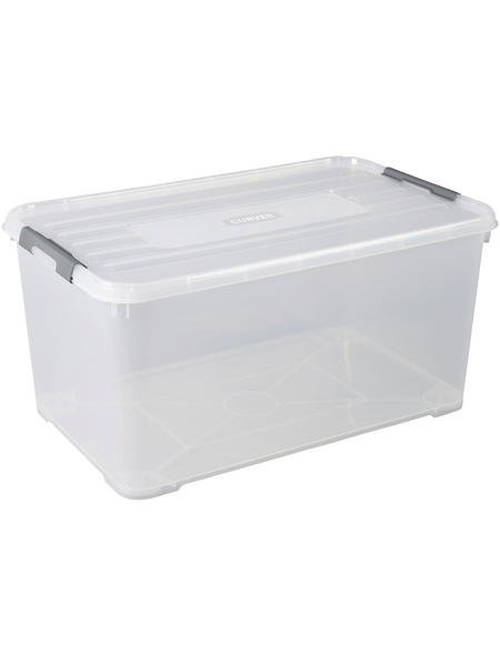 CURVER Aufbewahrungsbox, BxHxL: 80 x 39 x 50 cm, Kunststoff