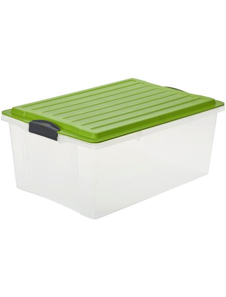 Rotho Aufbewahrungsbox »Compact«, BxHxL: 40 x 25 x 57 cm, Kunststoff