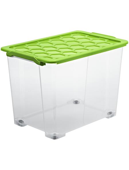 Rotho Aufbewahrungsbox »Evo Safe«, BxHxL: 39,5 x 41,2 x 59 cm, Kunststoff