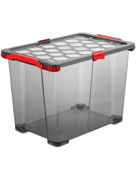 Rotho Aufbewahrungsbox »EVO TOTAL«, BxHxL: 39,5 x 41,2 x 59 cm, Kunststoff