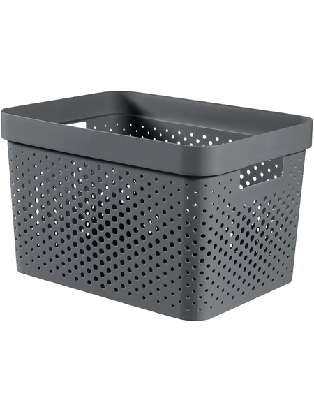 CURVER Aufbewahrungsbox »Infinity«, BxHxL: 35,6 x 21,8 x 26,6 cm, Kunststoff