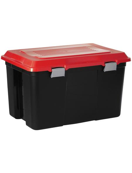 Rotho Aufbewahrungsbox »TANKER«, BxHxL: 47 x 41,7 x 71,5 cm, Kunststoff