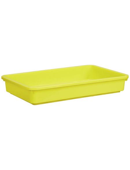 WINDHAGER Aussaatschale, BxH: 24 x 6 cm, gelb