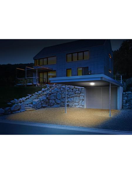 STEINEL Außenleuchte »DL Vario Quattro«, 10 W, Hart-Polyethylen (HDPE), IP54