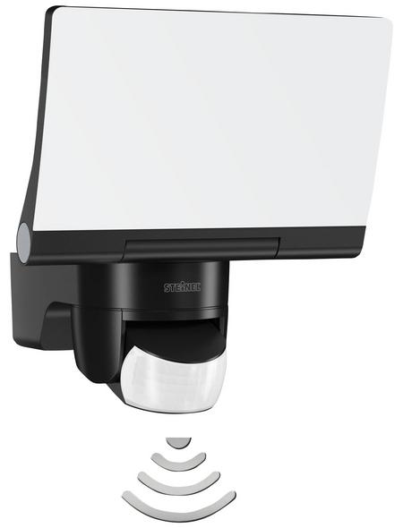 STEINEL Außenleuchte »XLED Home 2«, 14,8 W, inkl. Bewegungsmelder, IP44, neutralweiß