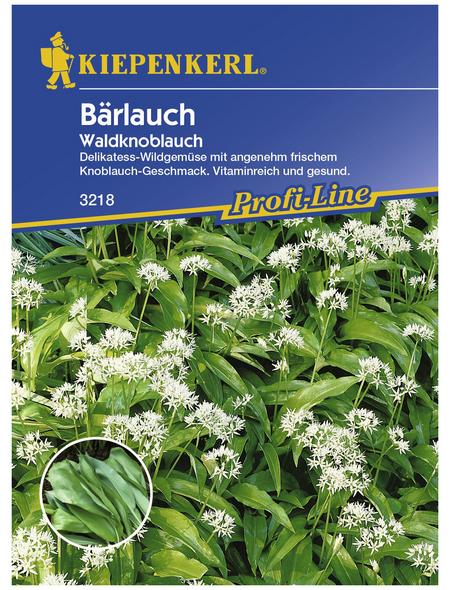 KIEPENKERL Bärlauch ursinum Allium