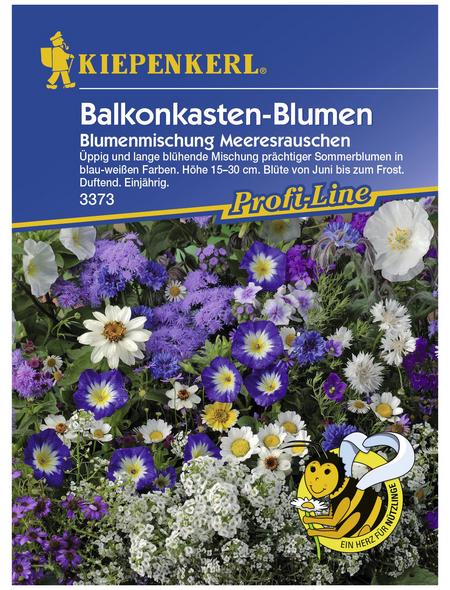 KIEPENKERL Balkonkastenblumen-Mischung, Samen, Blüte: mehrfarbig