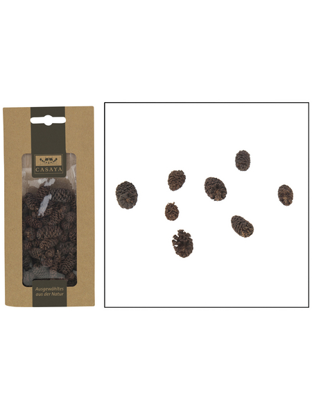 CASAYA Basteln Minizapfe Braun, 50 g