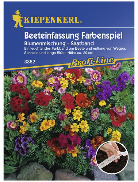 KIEPENKERL Beeteinfassungsmischung, »Bunte Mischung«, Samen, Blüte: mehrfarbig