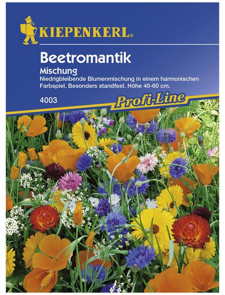 KIEPENKERL Beetromantik Mischung GP, Mischung, Samen, Blüte: mehrfarbig