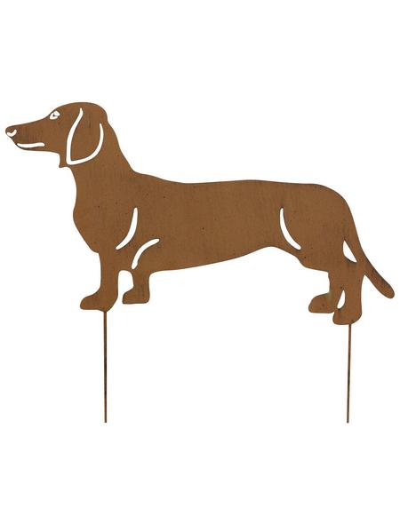 Beetstecker, Hund, rostfarben, Metall