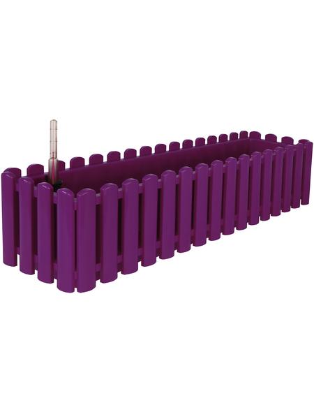 CASAYA Bewässerungskasten »Aqua Palido« mit 3,2 l Fassungsvermögen, rechteckig, purpur