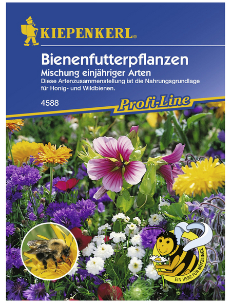 KIEPENKERL Bienenfutterpflanze, Samen, Blüte: mehrfarbig