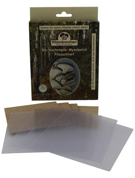 Bio Myzelpatch Pilzzuchtset Austernpilz, für den Garten