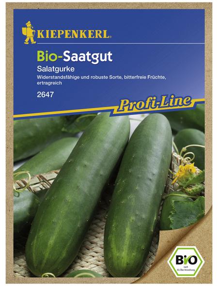 KIEPENKERL Bio Salatgurke sativus Cucumis »Sonja«