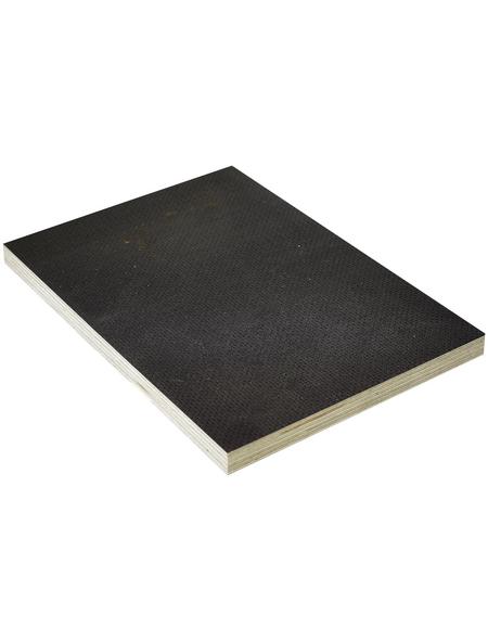 Birke Sieb-Film-Sperrholzplatte, 1250x2500x15 mm, Braun