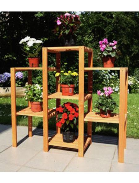 PROMADINO Blumenetagerie, BxH: 98 x 88 cm, Kiefernholz, honig