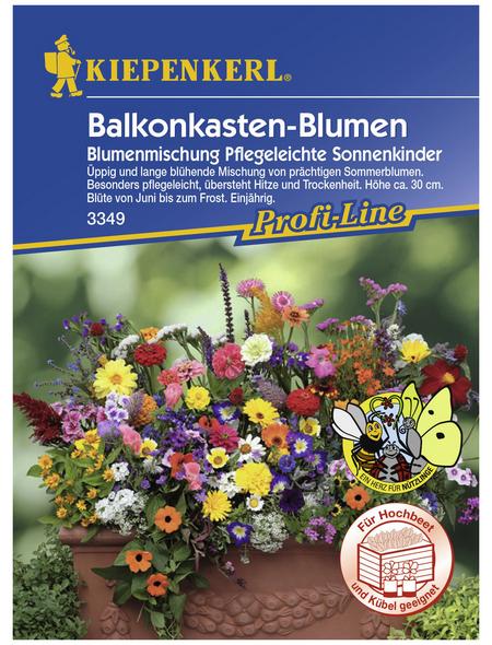 KIEPENKERL Blumenmischung, »Mischung«, Samen, Blüte: mehrfarbig