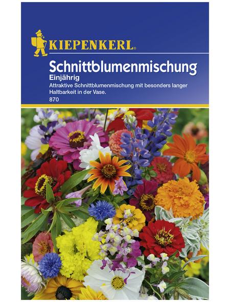 KIEPENKERL Blumenmischung, Mischung, Samen, Blüte: mehrfarbig